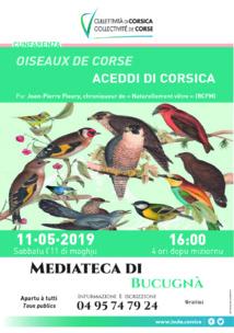 """Conférence """"Oiseaux de Corse"""""""